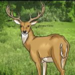 Илюшина сказка «Волшебный олень»